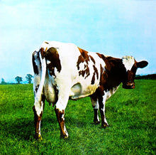 Load image into Gallery viewer, Pink Floyd- Atom Heart Mother