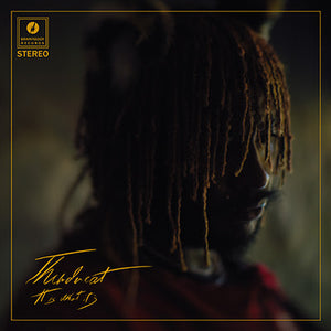 Thundercat- It Is What It Is PREORDER OUT 4/3