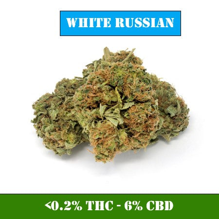 White Russian CBD