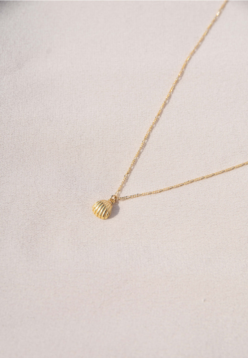 COQUILLAGE Necklace