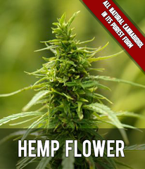 Our finely crafted products start with hemp in its purest form