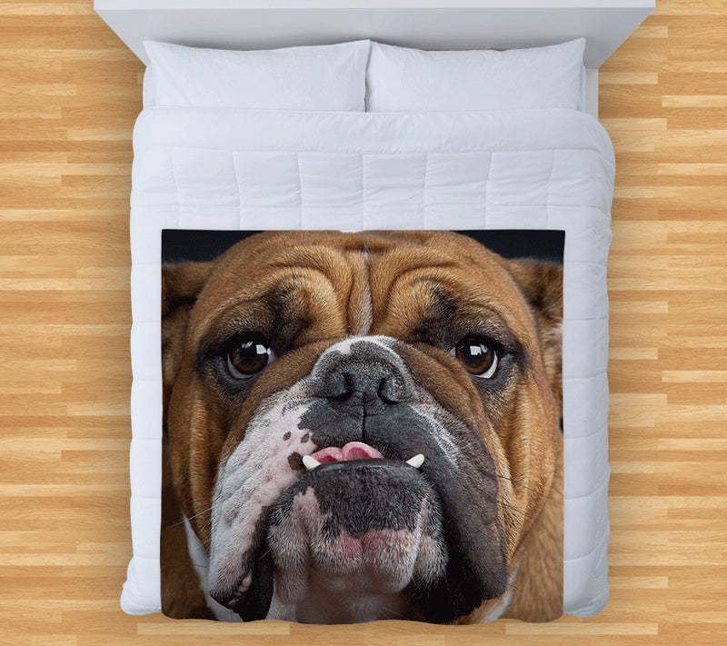 Bulldog Face - Fleece Throw