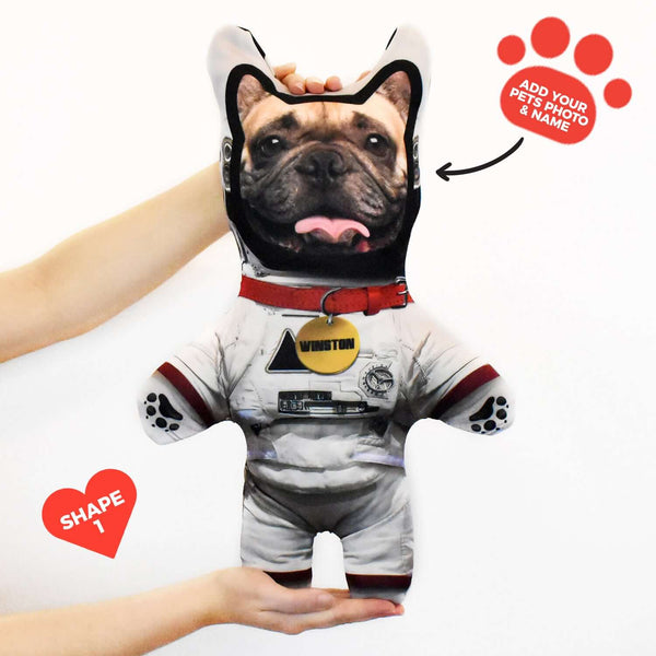 Astronaut - Personalised Pet Mini Me