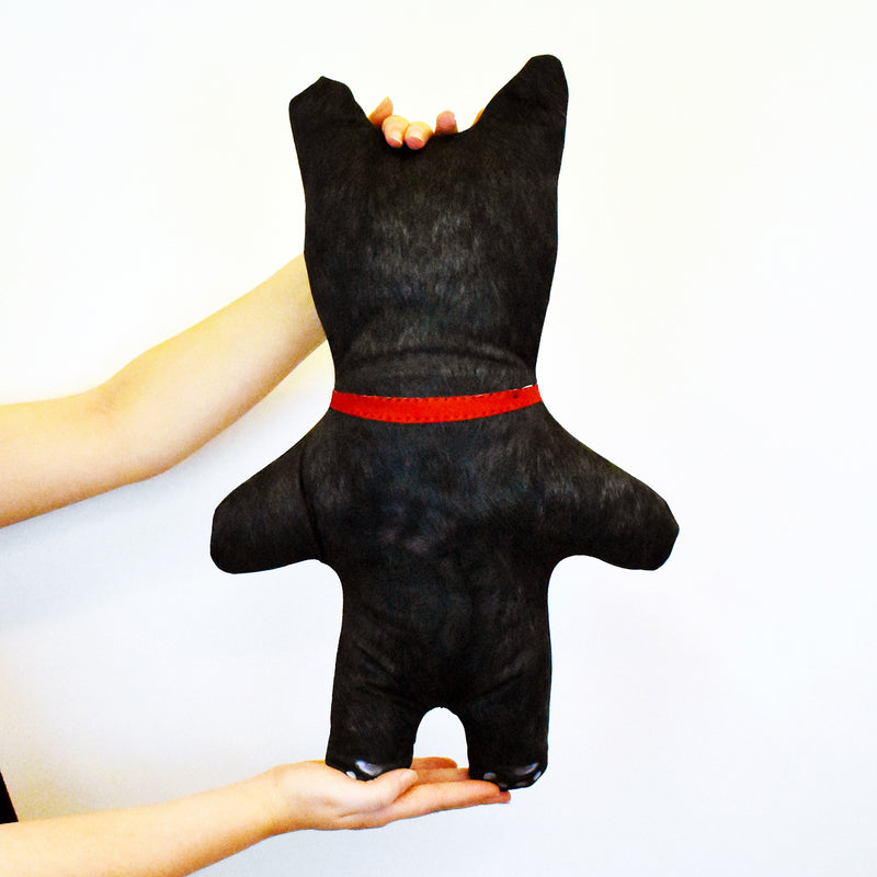 Black Cat Fur - Personalised Pet Mini Me
