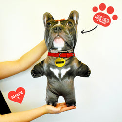 Grey Dog Fur - Personalised Pet Mini Me