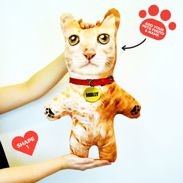 Ginger Cat Fur - Personalised Pet Mini Me