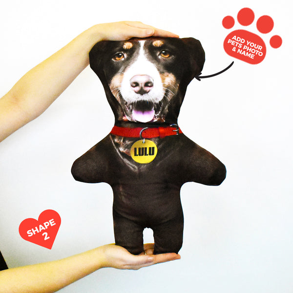 Brown Dog Fur - Personalised Pet Mini Me