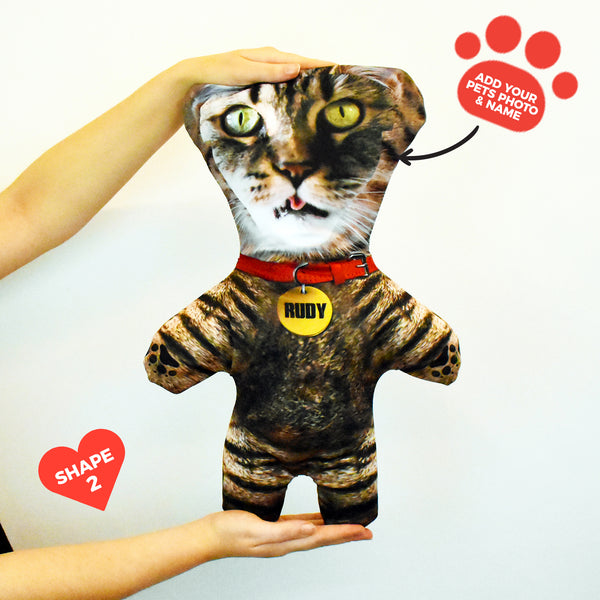 Tabby Cat Fur - Personalised Pet Mini Me