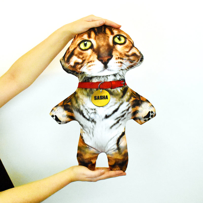 Tiger - Personalised Pet Mini Me