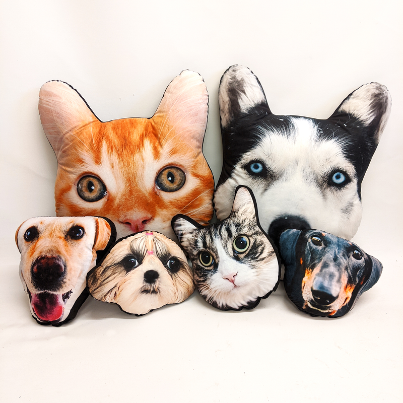 pet face cushion collection