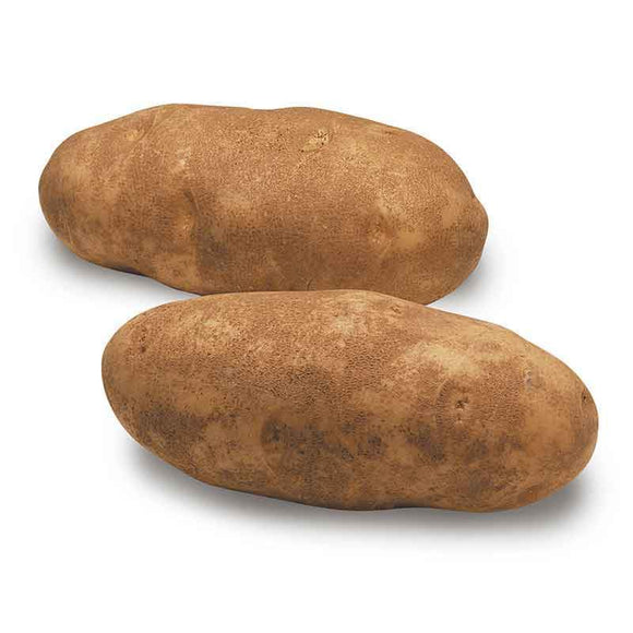 Potato / Patates - 1 Lb