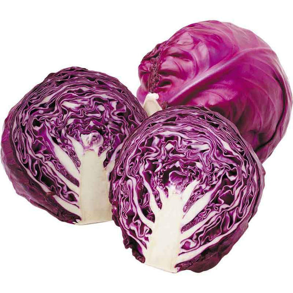 Red Cabbage / Kirmizi Lahana - Each