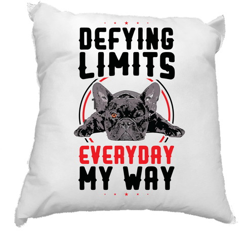 Image of PrintTech Pillow Insert DEFYING LIMITS, EVERYDAY, MY WAY | Pillow Insert