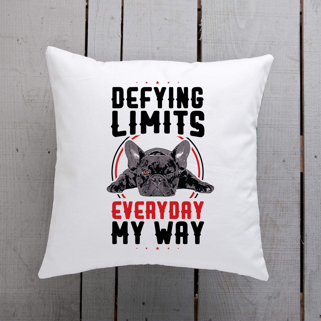 PrintTech Pillow Insert DEFYING LIMITS, EVERYDAY, MY WAY | Pillow Insert