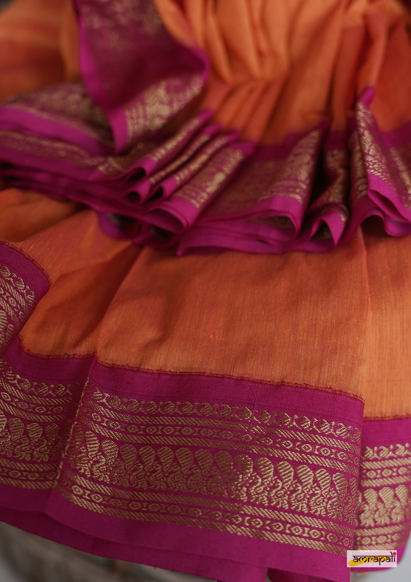 Handloom South Cotton with Gold Zari Detailing