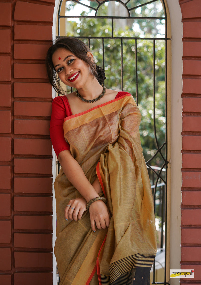 Handloom Cotton Resham with Woven Sequined Palla