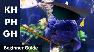 Simple guide on understanding aquarium water parameters: PH, GH, KH