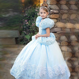 Velvet Puff sleeve Girls princess dress Cinderella costume cosplay elsa dress kids dresses for girls Cosplay Cinderella vestidos