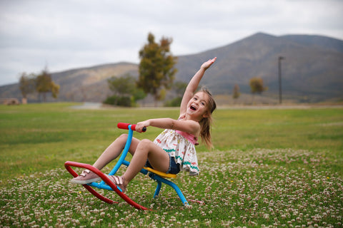 Image of Kids Rocking Chair Seesaw Rider - Summer 2020 - Backyard Endless Fun - Safe At Home