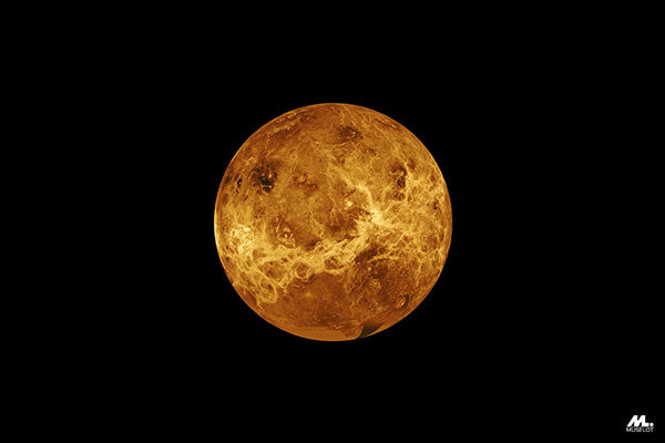 Planet Venus, which is a symbolism of love and emotions.