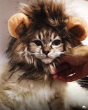 Muselot's funny and cute lion mane for cats and dogs.