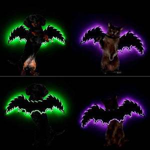 Halloween Bat Wings Cosplay for Cats Dogs