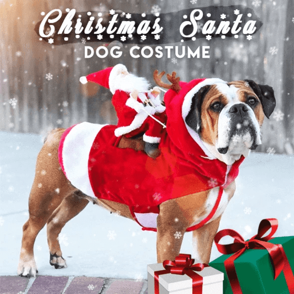 Homerri Christmas Santa Dog Costume