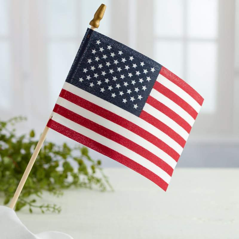 Small American Flag With Pole Handing