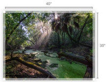 Load image into Gallery viewer, Ancient Light I Canvas