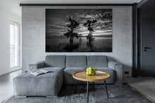 Load image into Gallery viewer, Emotions Revealed BW HD Acrylics and Metallic