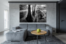 Load image into Gallery viewer, Awakening Earth HD Acrylics and Metallic Prints