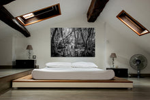 Load image into Gallery viewer, Ceremony Of Shadows-Cottonmouth Pond Canvas