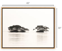 Load image into Gallery viewer, Forever Glades Canvas