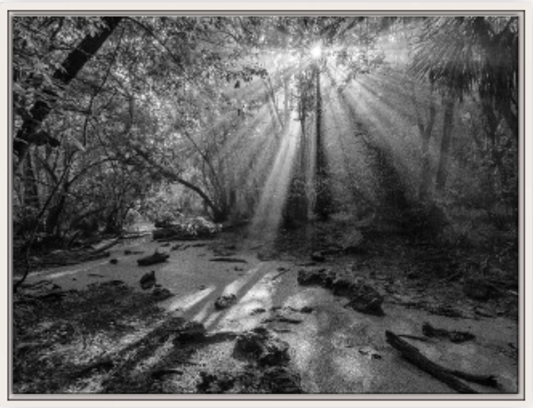 Ancient Light I B&W Canvas
