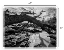 Load image into Gallery viewer, Hidden Earth, And The Shadows Dance Museum Quality Paper