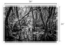 Load image into Gallery viewer, Ceremony Of Shadows-Cottonmouth Pond Museum Quality Paper