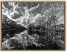 Load image into Gallery viewer, Where The Marsh Meets The Cypress Canvas