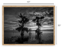 Load image into Gallery viewer, Emotions Revealed 	BW Canvas