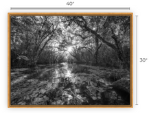 Load image into Gallery viewer, Dreaming now, Then BW Canvas