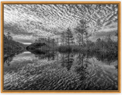Water Memory BW Canvas