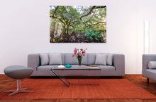 Load image into Gallery viewer, Pond of the Sacred Seeds I HD Acrylic Prints and Metallic