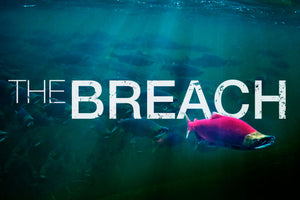 The Breach DVD