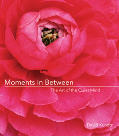 Moments in Between: The Art of the Quiet Mind (Daily Meditations; Inspiration Book for Women)
