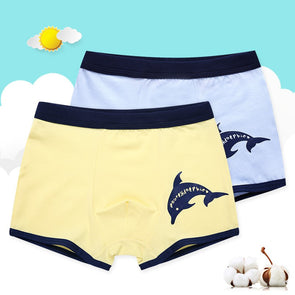 Boys Underwear Children