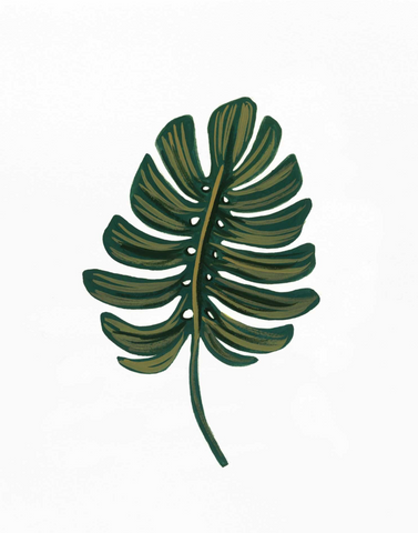 Rifle Paper Co. - Monstera Leaf Print
