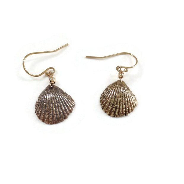 Found Sea Shell Earrings
