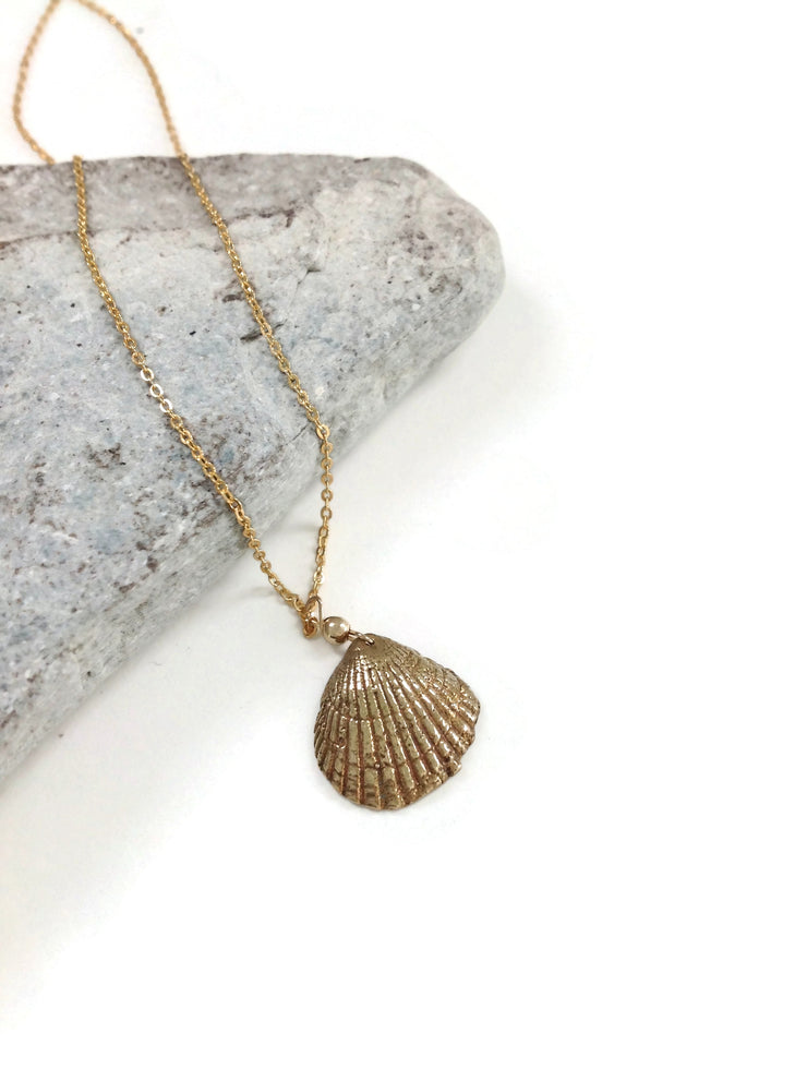 Found Sea Shell Necklace