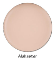 Face Foundation Alabaster Picture Perfect Foundation Leesi B.