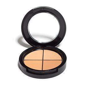 Face Foundation Quad 3 Cream Foundation Quads Leesi B.