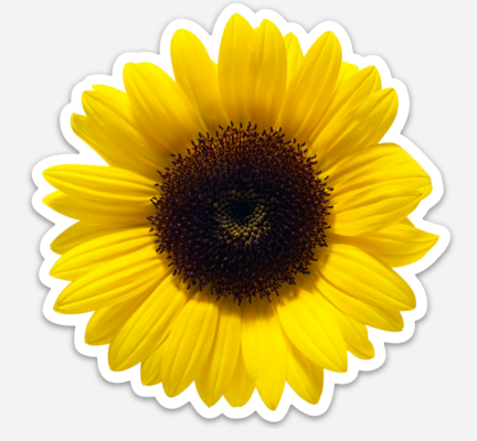 SUNFLOWER Sticker - New
